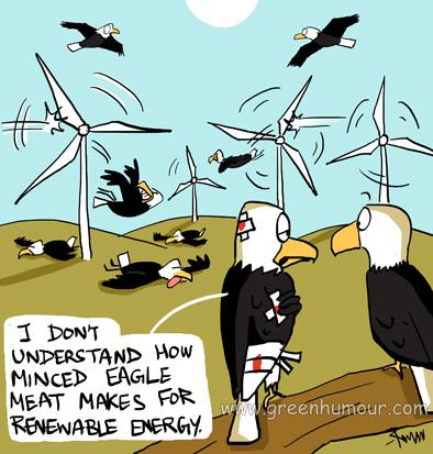 Bald Eagles Cartoon