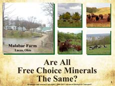 eLearning Series Book 1 - Minerals