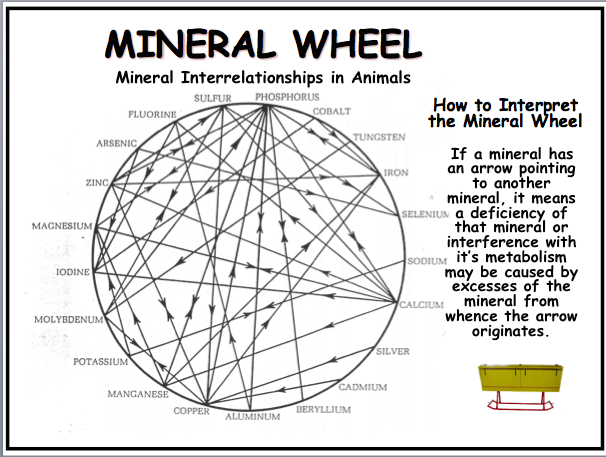 Mineral Wheel