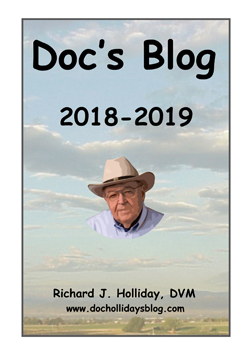 Doc's 2019 Blog Book